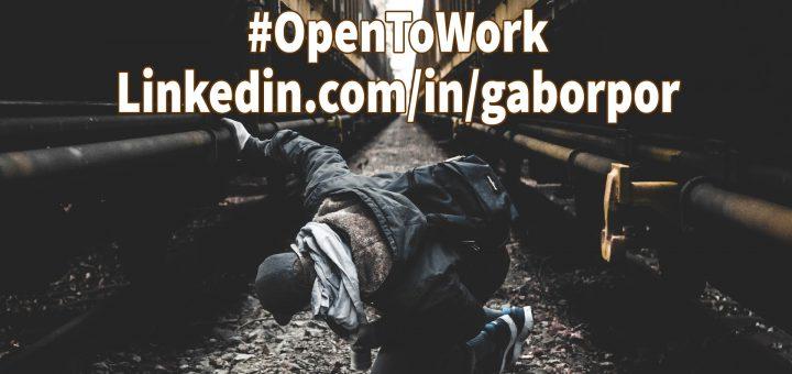 I, Gabor Por, am #OpenToWork